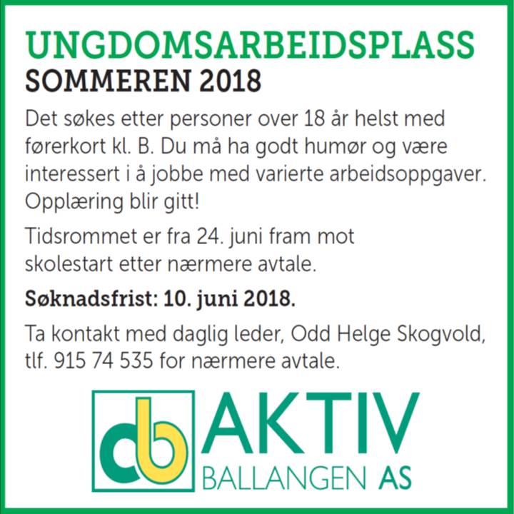 Sommerjobb2018